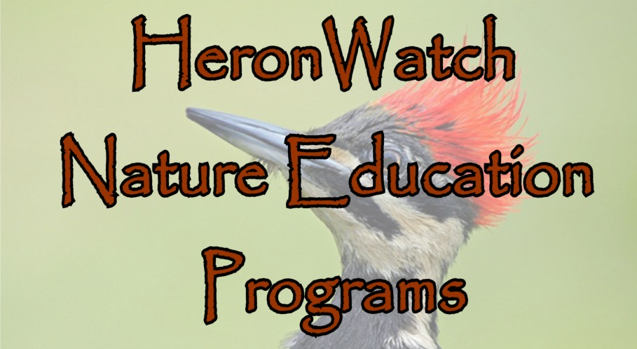 See HeronWatch Nature Education Programs List